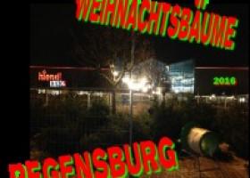 Weihnachtsbäume Regensburg zeigt wie es geht