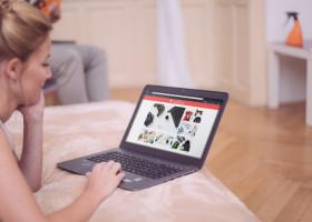 Tipps für sicheres Online-Shopping während der Weihnachtszeit von Avast Software