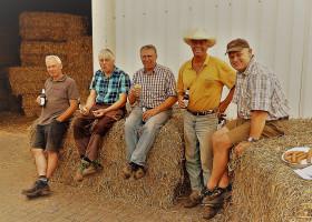 Strohparty nach Weizenernte auf der Ballermann Ranch