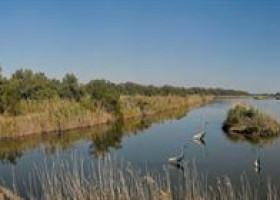 Herbstsaison mit Flamingo Watching im Mündungsdelta des Po
