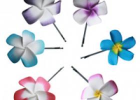 Aloha fürs Haar – Verführerische Blumen von Verlocke!